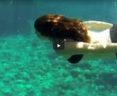 [VIDEO] Vacanta in Corfu – hero3