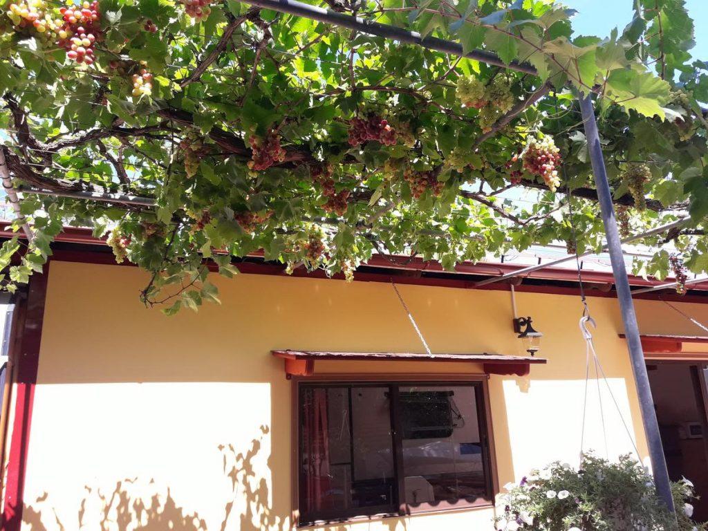 casa-vacanta-skala-rachouni-2